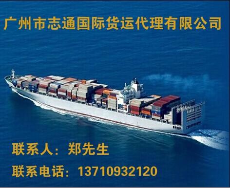 广州到新加坡-马来西亚-海运拼箱-时效快价格低