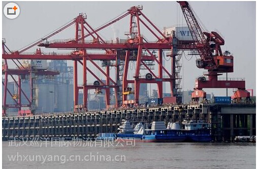 武汉巡洋国际物流有限公司
