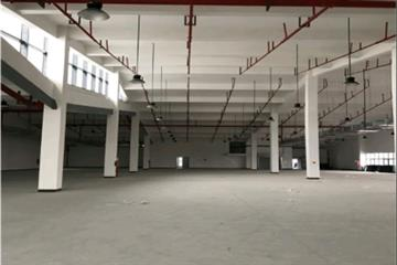 奉贤临港新片区独门独院3万平喷淋仓库出租带30亩场地