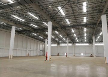 奉贤区4万平方米高标准丙二类高平台仓库出租